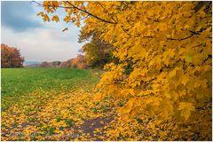 Herbst ..