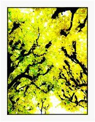 Herbst-Gelb 1