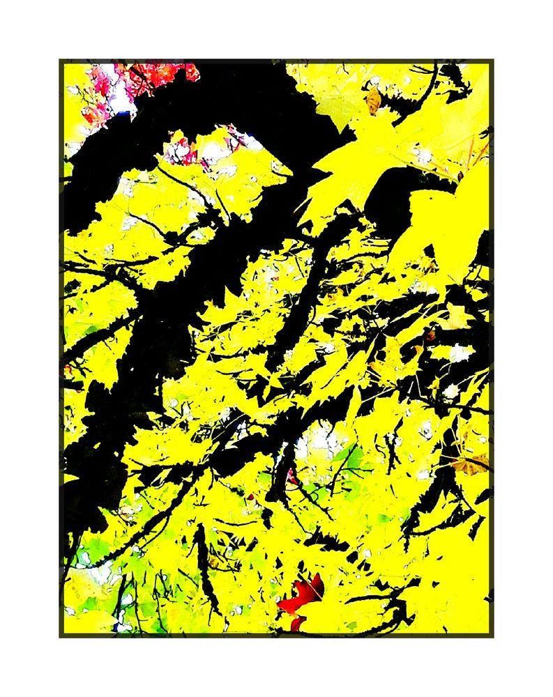 Herbst-Gelb 2