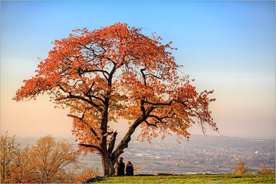 Herbst-Geplauder