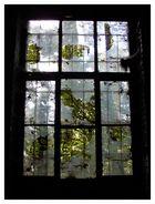 Herbst hinter zerbrochenem Glas...