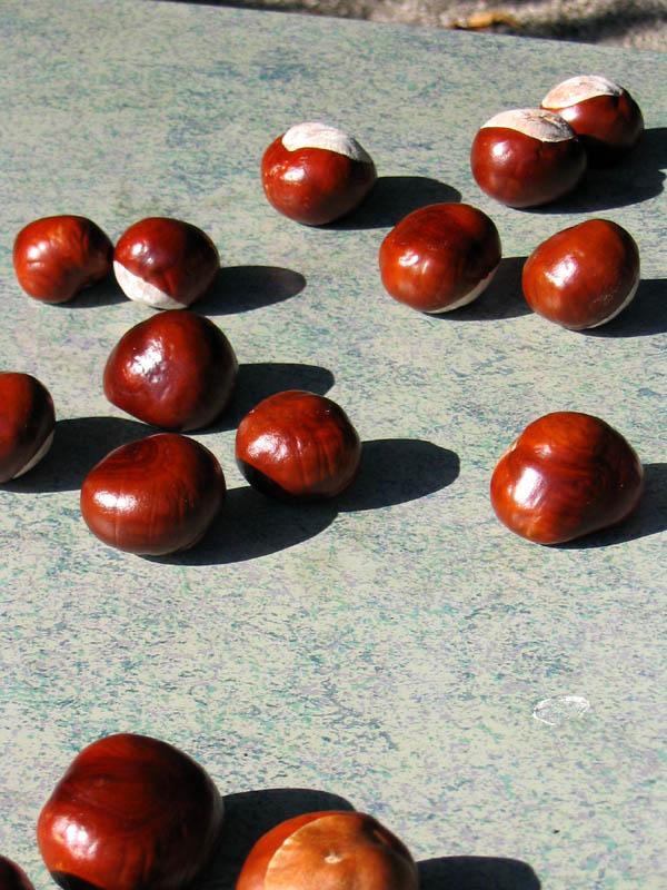 Herbst (I)