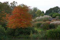 Herbst im...