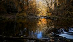Herbst im Albtal