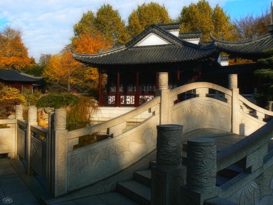 Herbst im chinesichen Garten... (8)