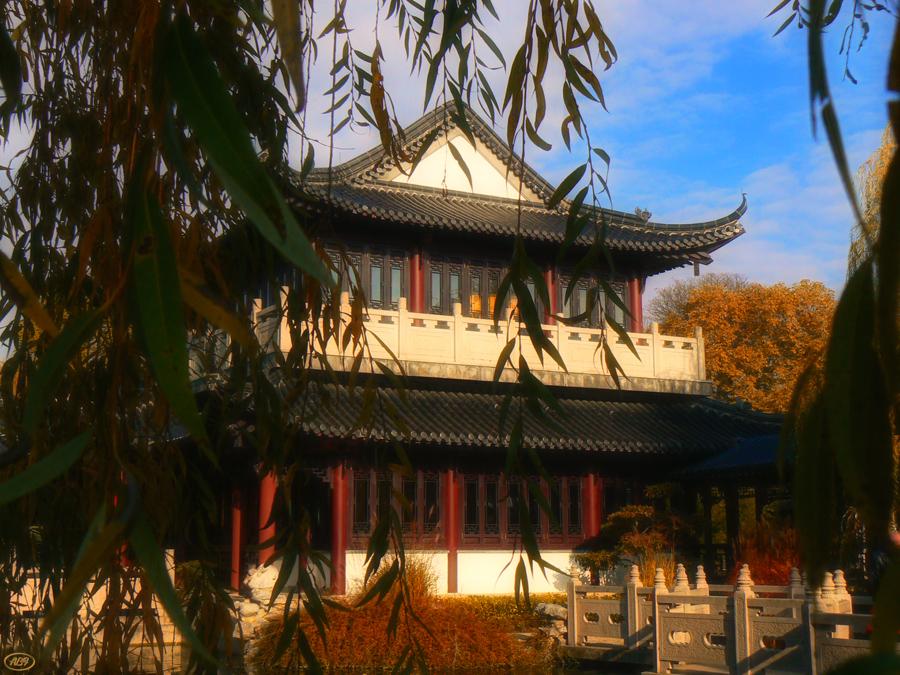 Herbst im chinesischen Garten... (4)