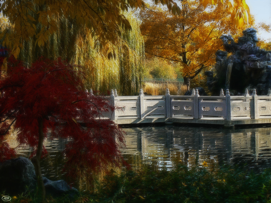 Herbst im chinesischen Garten... (6)