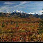 Herbst im Denali (reload)