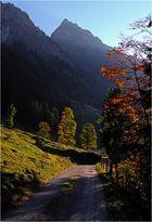 Herbst im Dietersbachtal 8