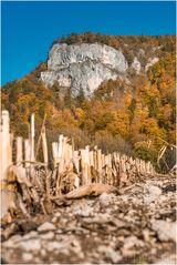 Herbst im Donautal