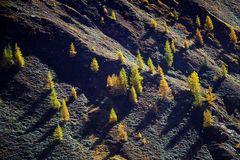 Herbst im Eisbruggtal