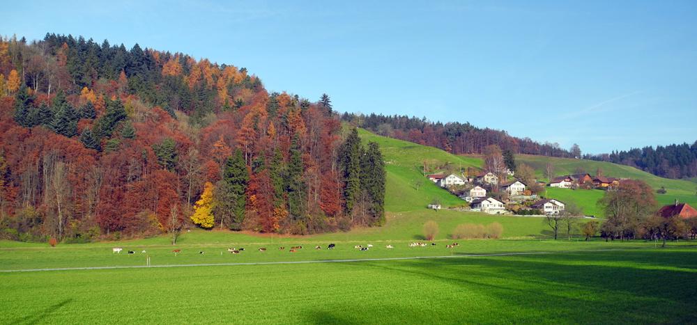 Herbst im Emmental
