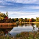 Herbst im Endspurt.....