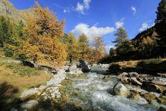 Herbst im Engadin (10)