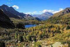 Herbst im Engadin (3)