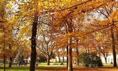 Herbst im Erlanger Schlossgarten