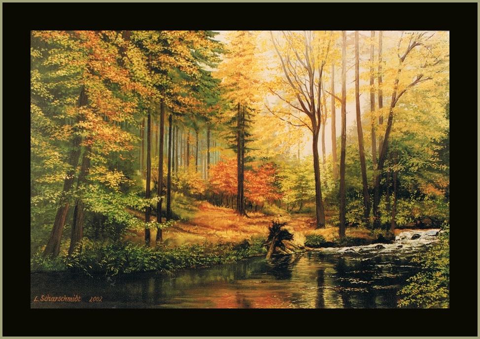 Herbst im Erzgebirgswald