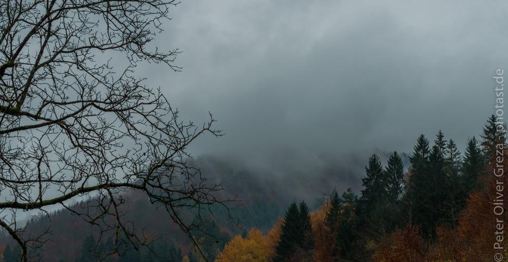 Herbst im Feldberg
