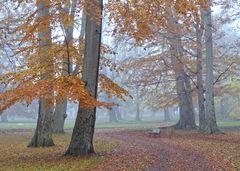 Herbst im Gothaer Schlosspark