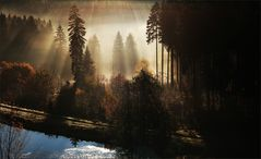 * Herbst im Harz *