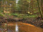 Herbst im Hauptsmoorwald