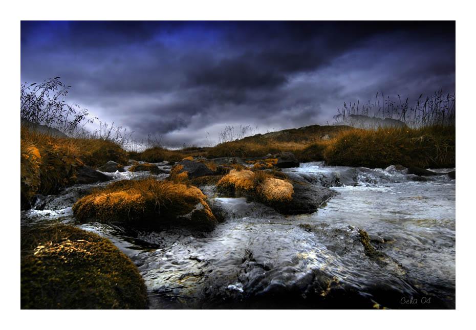 Herbst im Hochmoor 1