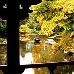 Herbst im Japanischen GartenIV