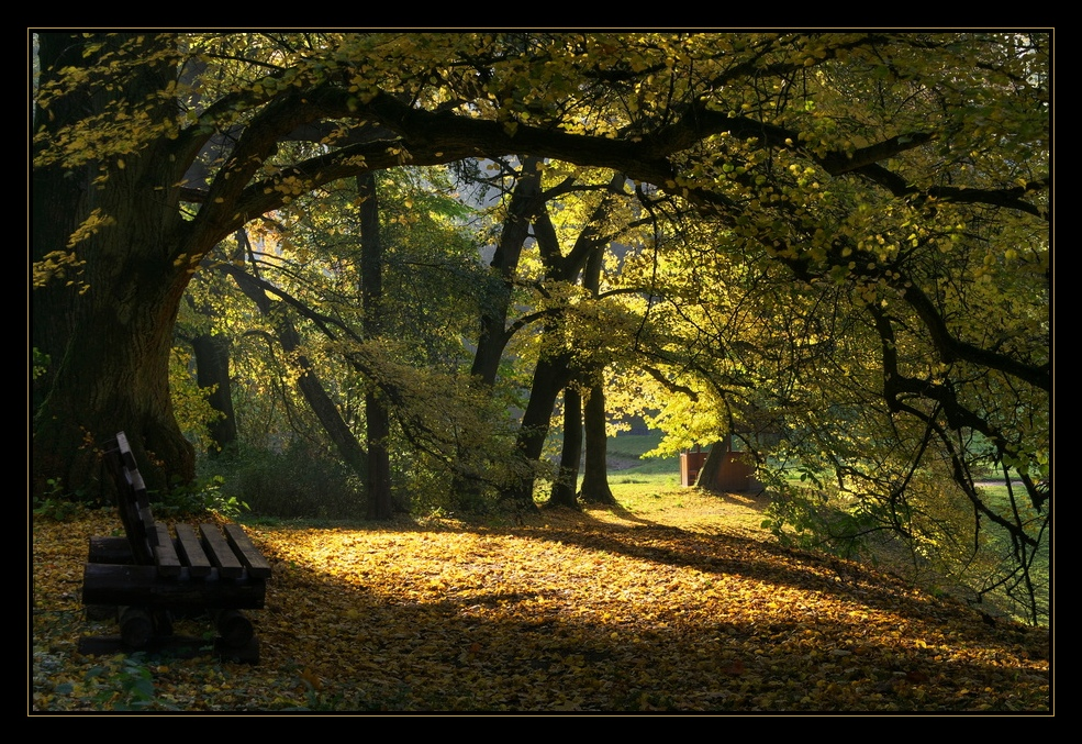 Herbst im Kaarzer Schlosspark