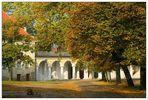 Herbst im Klosterhof