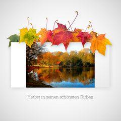 Herbst im Krefelder Stadtwald