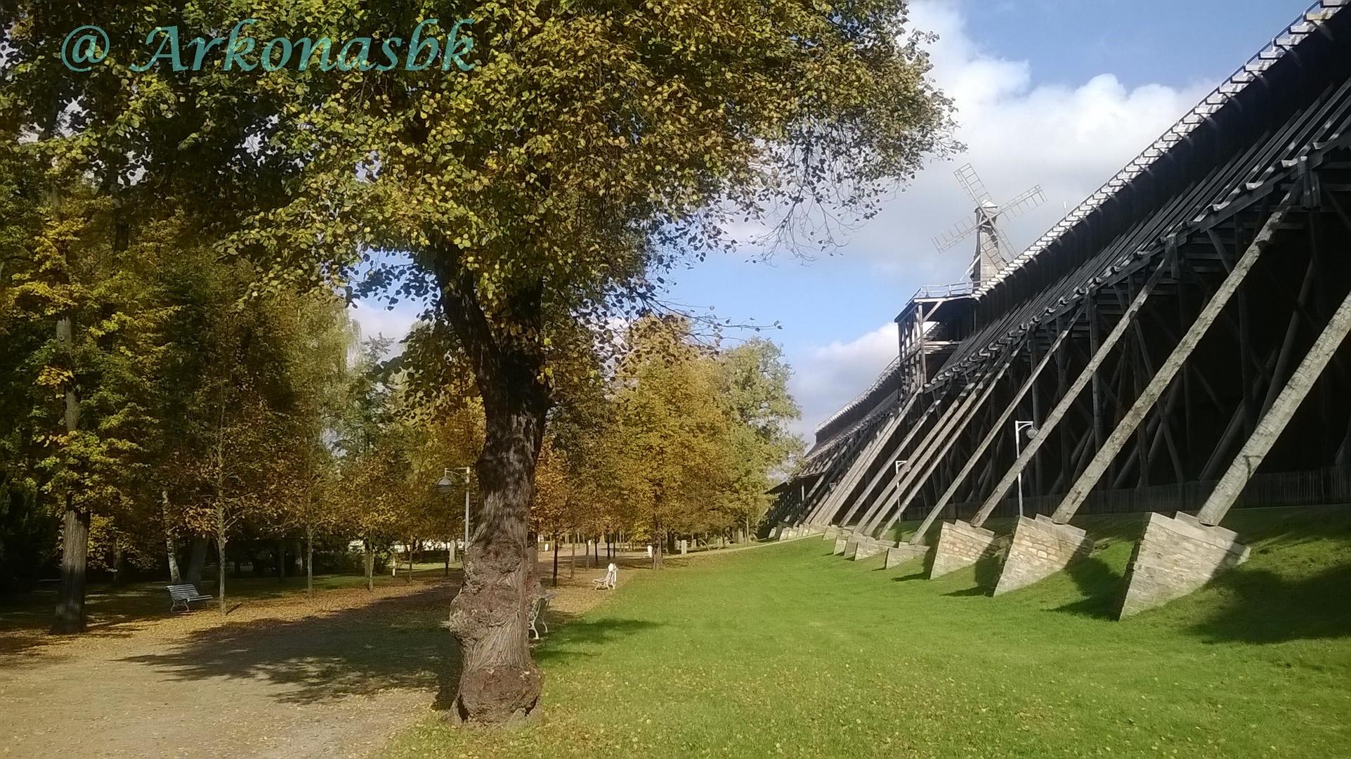 Herbst im Kurpark 1