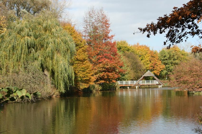 Herbst im Kurpark