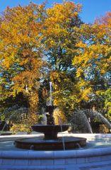 Herbst im Kurpark  Bad Reichenhall