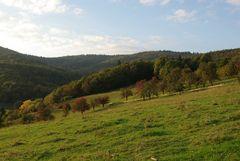 Herbst im Mausbachtal