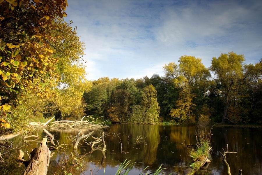 Herbst im Naturpark Barnim