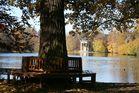 Herbst im Nymphenburger Park