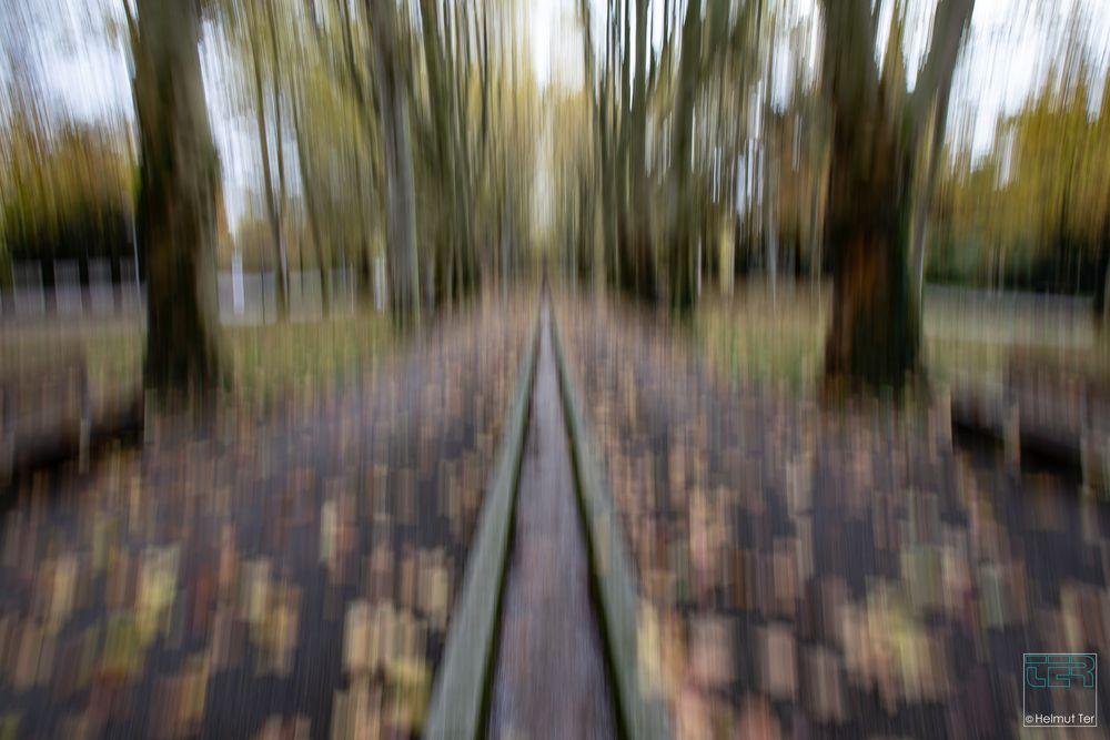 Herbst im Oberhofenpark Göppingen
