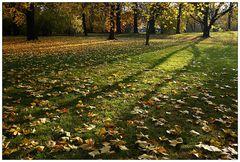 Herbst im Park (2)