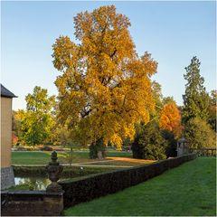 Herbst im Park von Schloss Dyck (1)