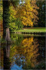 Herbst im Park von Schloss Dyck (5)
