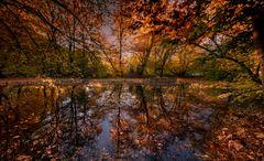 Herbst im Pasinger Stadtpark