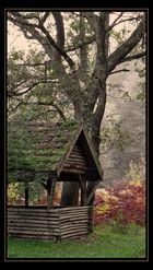 Herbst im Pfälzer Wald 7