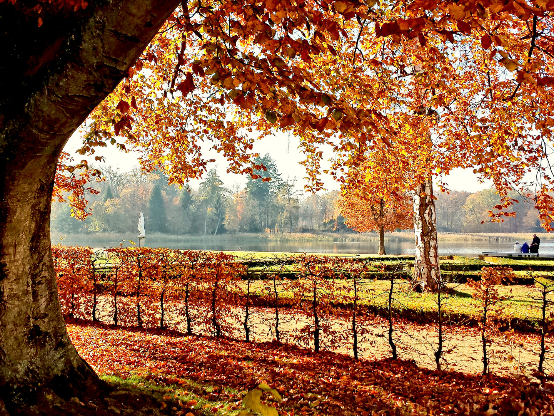 Herbst im Schlosspark Rheinsberg