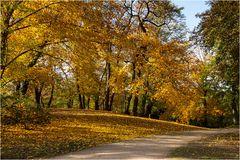 Herbst im Stadtgarten