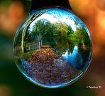 Herbst im Stadtgarten Neuss - ein Sonnenplatz am Teich