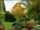 Herbst im Stadtpark...