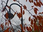 Herbst im Südpark Düsseldorf