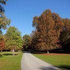 Herbst im Tiergarten #2