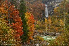 Herbst im Verzascatal