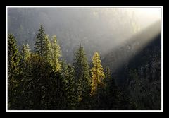 Herbst im Wimbachgries 05